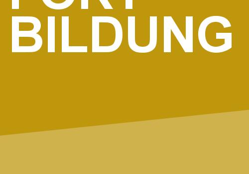 NSU-Bildungsbaustein